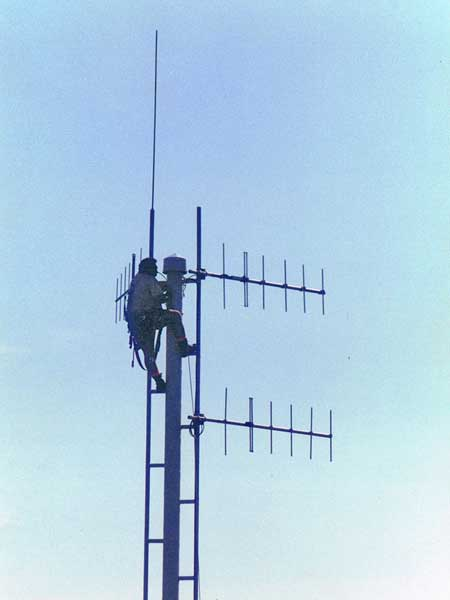 Rigger Friday Anania up the pole at Musick Point Radio, 23 January 2000
