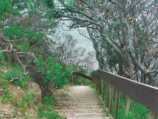 Steps leading to the tidal beach at Musick Point